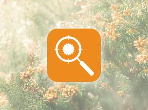 花粉撃退モードのイメージ画像です。花粉を虫眼鏡で探しています。クリックすると、商品特長ページ「花粉撃退運転」の説明箇所にリンクします。