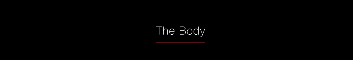 LUMIX S Series The Body