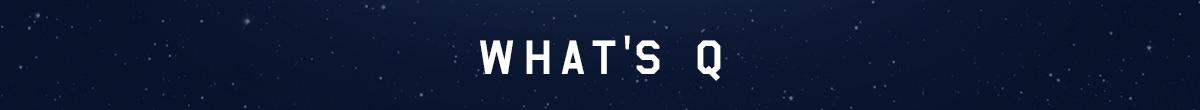 項目の見出し画像です。この項目は「WHAT'S Q」です。