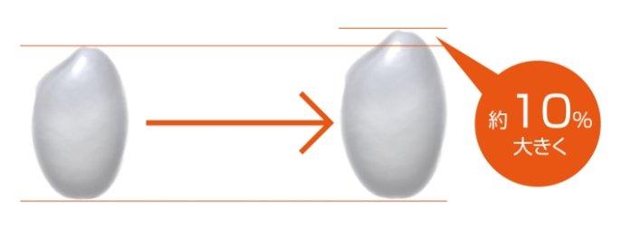 加圧追い炊きplusのイメージ画像です。米粒を約10%大きく炊き上げることを説明しています。