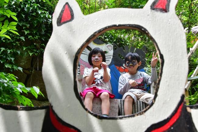 「尾道イーハトーヴ猫祭り2018フォトコンテスト 写真展」を開催~広島県尾道市の魅力を発信~【パナソニック LUMIX CLUB PicMate】