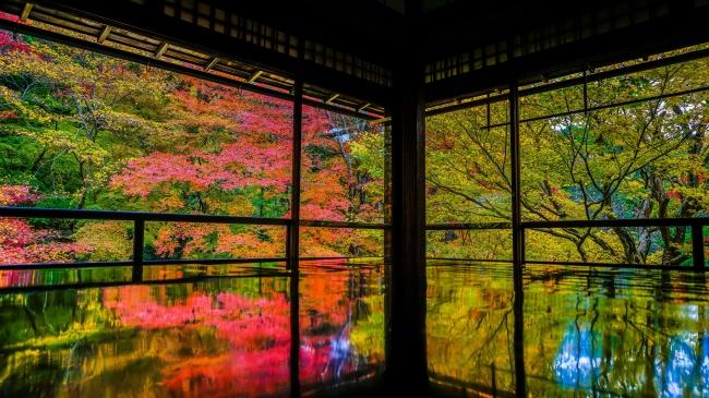 パナソニックセンター大阪で、「あなたと小川珈琲、あなたと京都フォトコンテスト」入賞作品による写真展を開催!【パナソニック LUMIX CLUB PicMate】