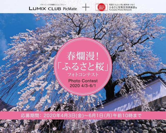 「ふるさと桜フォトコンテスト2020」開催!賞品には日本各地の名産品をご用意【パナソニックLUMIX CLUB PicMate】