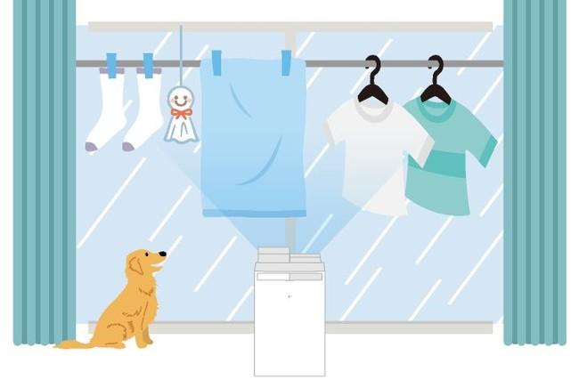 【梅雨の洗濯のお困りごとを調査】コロナ禍で洗濯ストレスも増加傾向。洗濯物を干す時間や種類にも変化~今年こそ失敗しない!洗濯&部屋干しテクニックをご紹介~