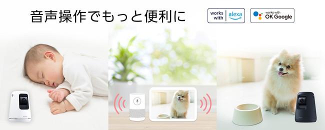 パナソニック HDペットカメラ、ベビーカメラ、屋内HDカメラがAmazon Alexaに対応~スマートスピーカーで音声操作が可能に