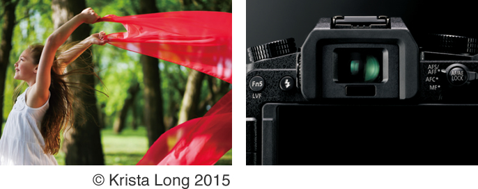 DIGITAL CAMERA | 海外仕様品 -Tourist Models- | Panasonic